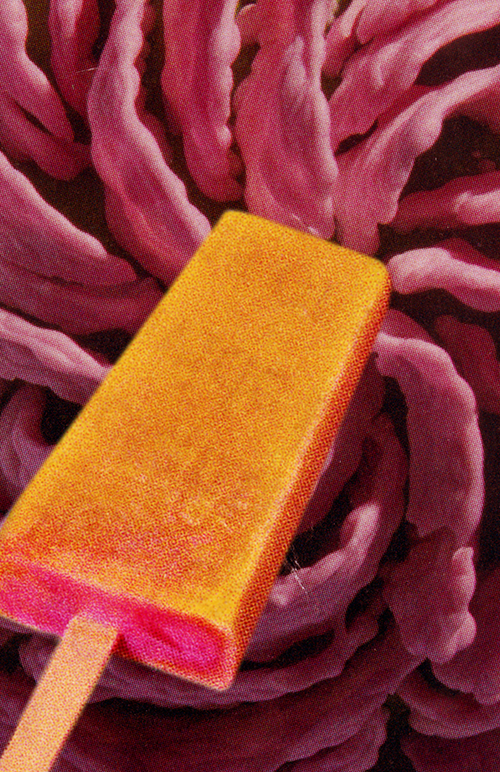 Popsicle in front of swirled texture
