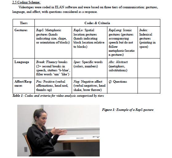 Screenshot of Coding Scheme